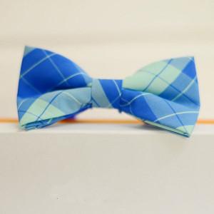 Синяя бабочка галстук в клетку