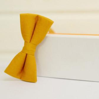 Оранжевая бабочка галстук