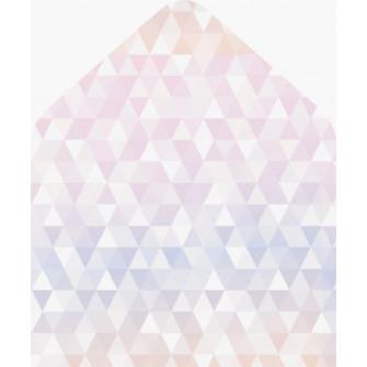Геометрия - вкладка в конверт