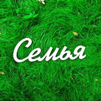 """Буквы на свадьбу - слово """"Семья"""""""