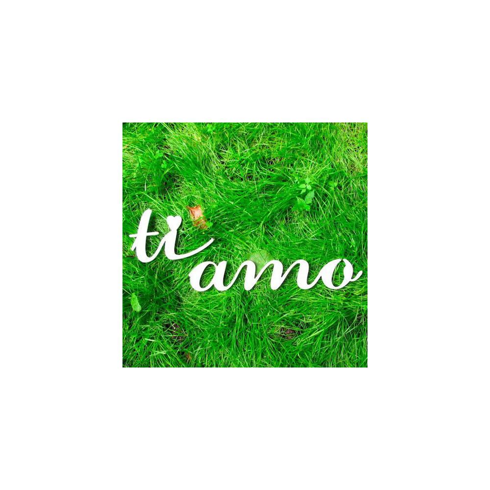 """Буквы на свадьбу - слово """"Ti Amo"""""""