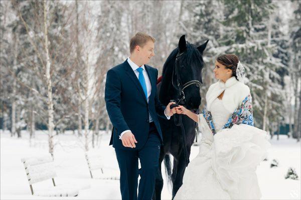 зимняя фотосессия с лошадьми