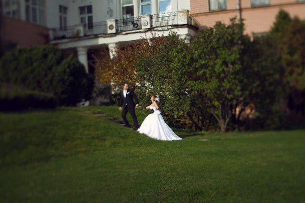свадебные фотосессии осенью