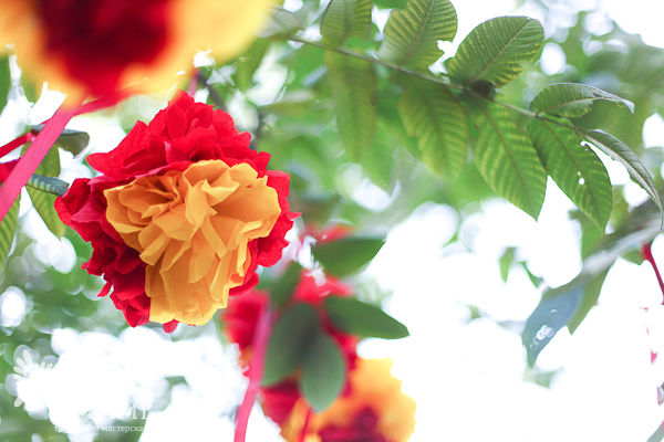 оформление свадьбы в красном и желтом