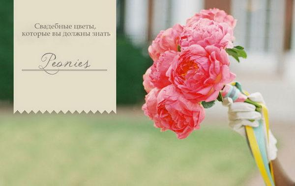 популярные цветы для букетов