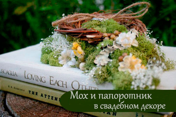 мох и папоротник на свадьбе