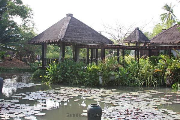 территория отеля Таиланда