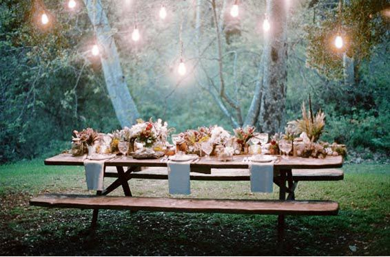 свадьба павлина