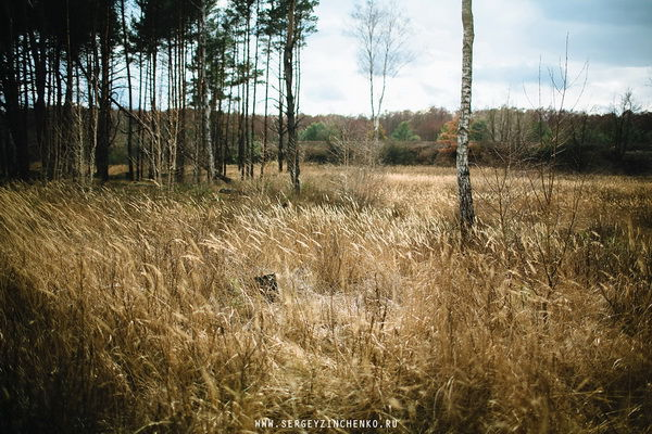 осеняя фотосессия на природе