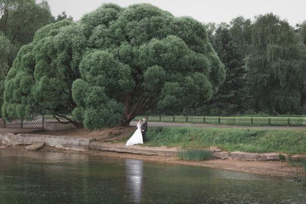свадебная фотосессия летом на природе