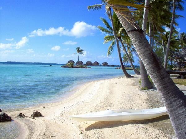 медовый месяц во Французской Полинезии