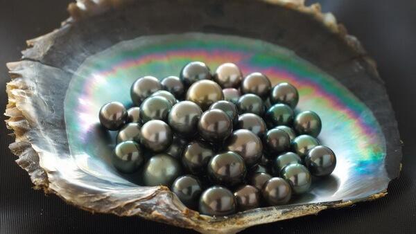 жемчуг во Французской Полинезии
