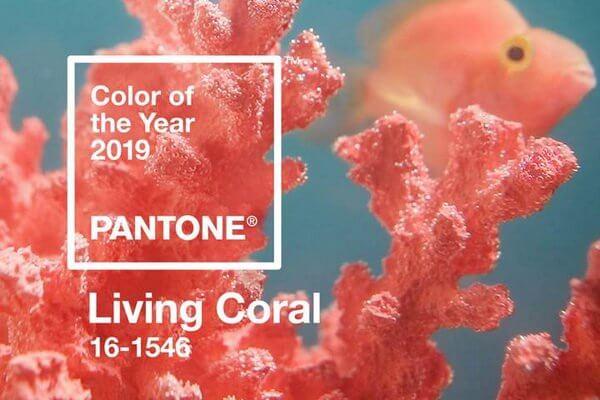 Цвет 2019 года — Живой Коралл (Living Coral)