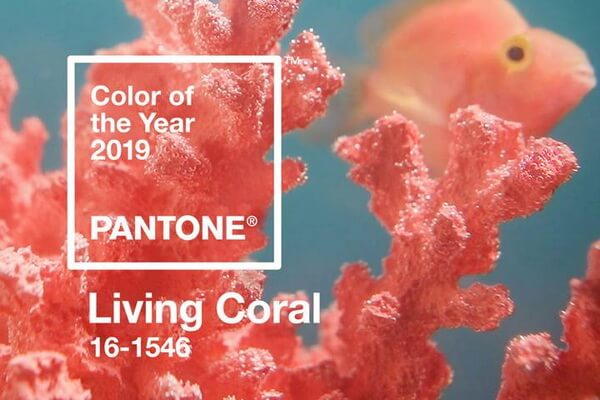цвет 2019 живой коралл